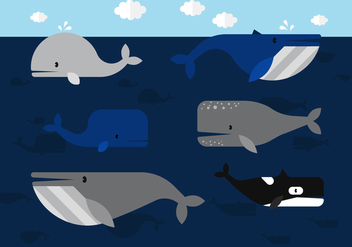 Vector Whale - Kostenloses vector #360425