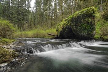 Silver Creek - Kostenloses image #362835