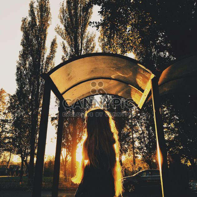 Girl in sunny evening - Free image #363655