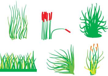 Reeds Vector - Free vector #364095