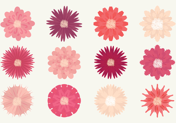 Vector Flower Set - Free vector #364345