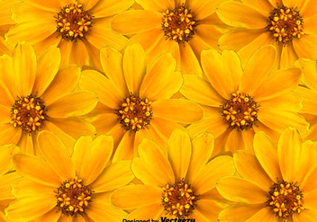 Vector Yellow Flowers Background - бесплатный vector #364775