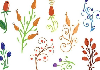 Free Rosehip Ornaments Vectors - бесплатный vector #364875