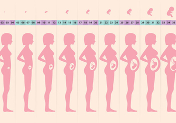 Pregnant Cycle - Free vector #364935