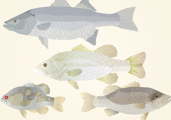 Set Of Fishes - vector gratuit #368125