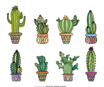 Hand drawn cactus set - Free vector #372705
