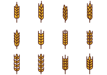Free Wheat Vector - vector gratuit #377285