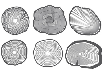 Tree Rings Vector - бесплатный vector #377765