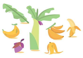 Banana Tree Vector - vector gratuit #378435