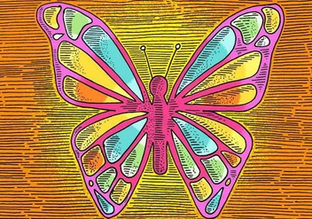 Butterfly Line Drawing - vector gratuit #380345