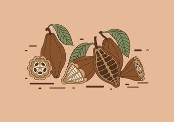 Cocoa Beans Vector - Free vector #380705