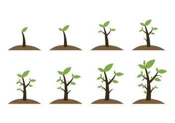 Free Grow Up Plant Icons - Free vector #384785