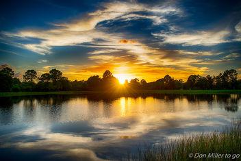 Florida Gold - Free image #385225