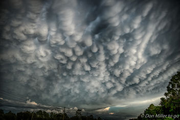 Mammatus Clouds - Free image #385885