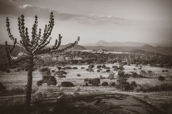 African Landscape - Kostenloses image #385955