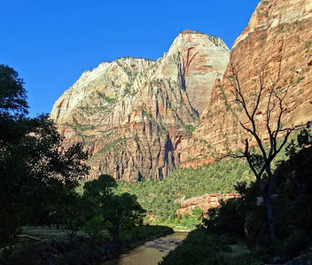 Sunrise, Virgin River, Zion NP 2014 - image gratuit #387045