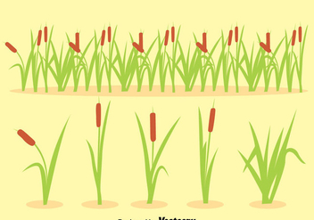 Reeds Collection Vector - Free vector #389795