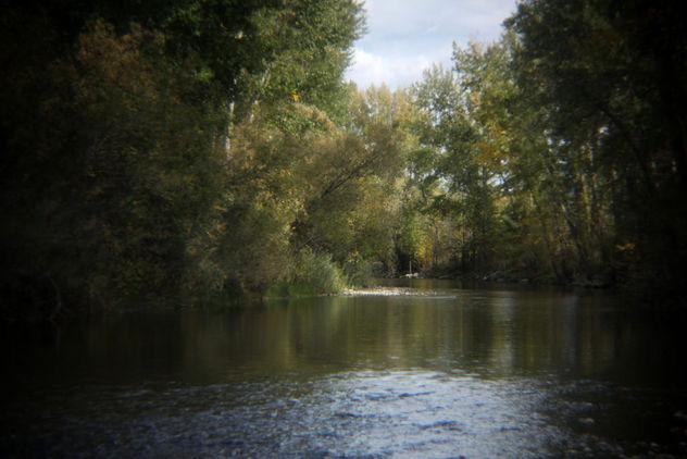 Creek - Free image #392505