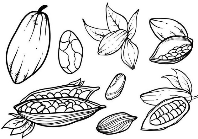 Free Hand Drawn Cocoa Beans Vector - Free vector #395025
