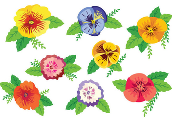 Free Colorful Pansy Vector - Free vector #396125