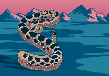 Rattlesnake In The Desert - бесплатный vector #403925