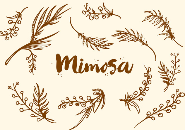 Free Hand Drawn Mimosa Plant Vector - Free vector #406075