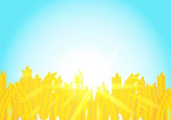 Background On Rice Crop Flowers In The Sunshine - vector #406525 gratis