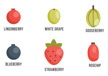 Selection of Berries and Grapes - vector gratuit #407205