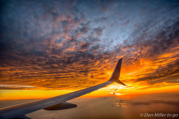 Florida Gold at 20K feet - image gratuit(e) #407365