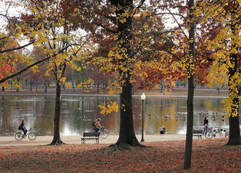 US (Washington DC) Late autumn colors at Tidal Basin Park - бесплатный image #409695