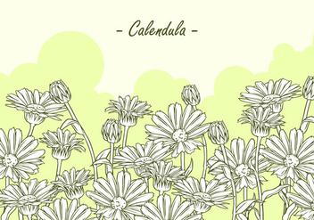 Calendula Hand Drawing Free Vector - Free vector #409825