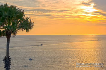 Sunset with fishing boats & palm. Phuket, cape Promthep - Free image #411355