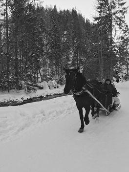 Horsepower - бесплатный image #415285