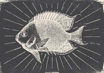 Vintage Fish Illustration - Free vector #418105