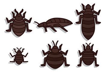 Bed Bug Vector - vector #418425 gratis