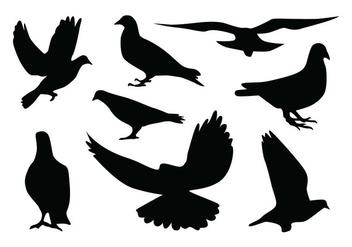 Pigeon Silhouette Vectors - Kostenloses vector #418835