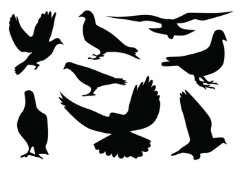 Pigeon Silhouette Vectors - Free vector #418835