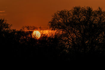 Evening - Kostenloses image #419185