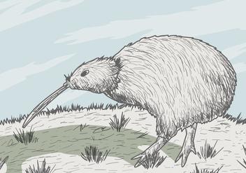 Kiwi Bird Vector - Free vector #419405