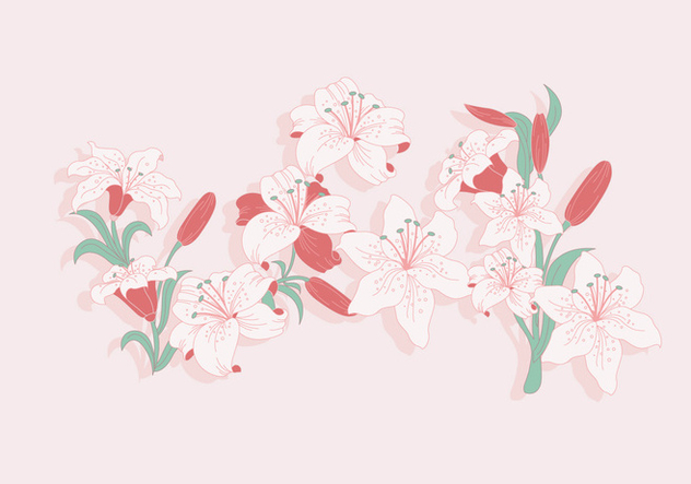 Easter Lily Vector - Free vector #420355