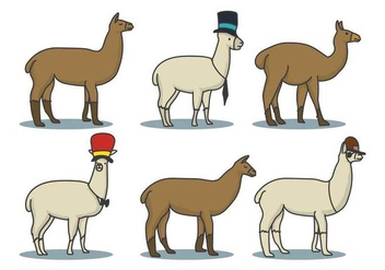 Llama Hand Drawn Illustration Set - Free vector #422405