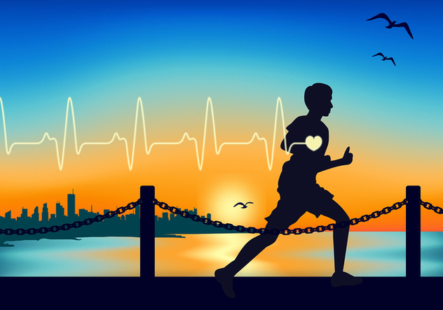 Heart Rate Running Free Vector - vector #422655 gratis