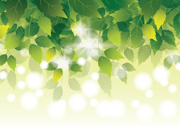 Natural Green Leaves Background - Kostenloses vector #423905