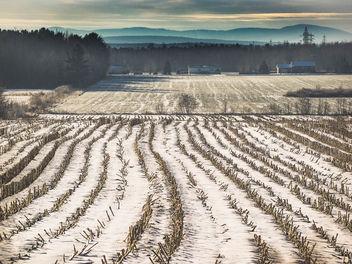 Winter landscape - image #426975 gratis