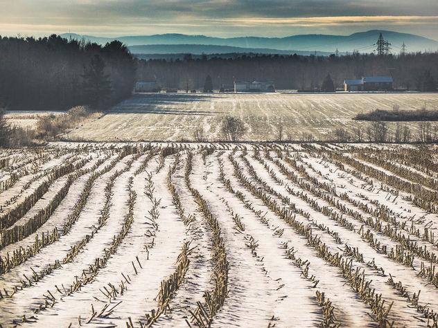 Winter landscape - Kostenloses image #426975