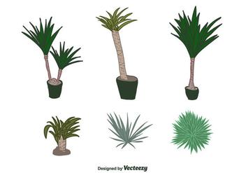 Yucca Plant Vector - vector gratuit #427755