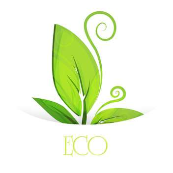Vector eco green leaves, isolated on white background - vector gratuit #128375