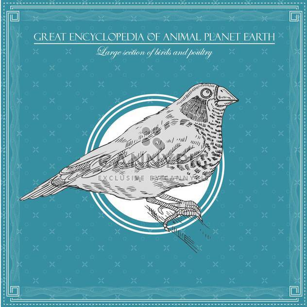 bird illustration in great encyclopedia of animal - Free vector #135025