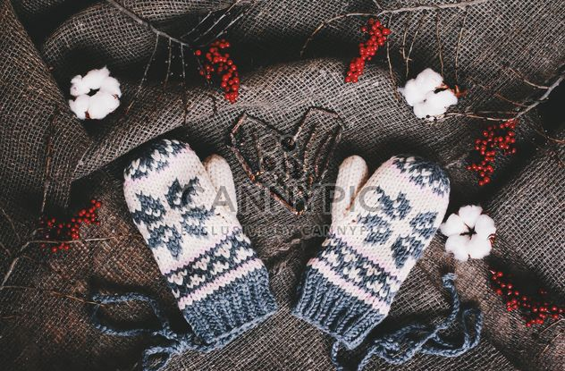 Wool mittens and red berries on background of sacking - Free image #136275