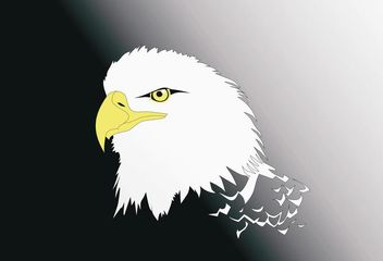 Vector Eagle Head - vector gratuit #139545